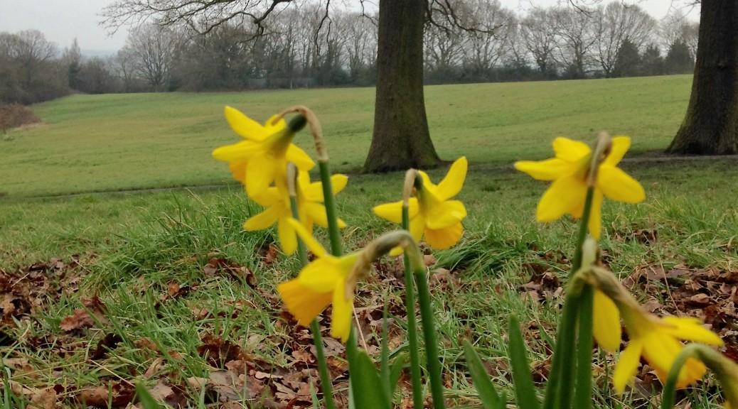 5-spring-bouquet-eugenia-brett